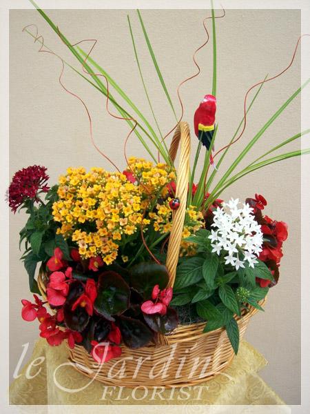 Planters And Live Plants Pga Florist 561 627 8118