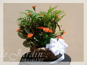 Planter with Live Plants and Fresh Cut Carnations