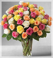 4 Dz Premium Long Stem Assorted Roses Arrangement