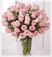 4 Dz Premium Long Stem Pink Roses Arrangement