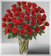 4 Dz Premium Long Stem Red Roses Arrangement