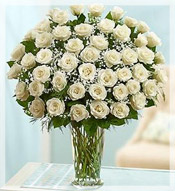 4 Dz Premium Long Stem White Roses Arrangement