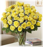 4 Dz Premium Long Stem Yellow Roses Arrangement