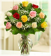 1 Dz Premium Long Stem Assorted Roses Arrangement
