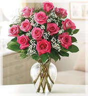 1 Dz Premium Long Stem Pink Roses Arrangement
