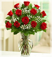 1 Dz Premium Long Stem Red Roses Arrangement