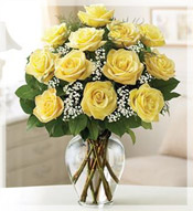 1 Dz Premium Long Stem Yellow Roses Arrangement