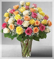 3 Dz Premium Long Stem Assorted Roses Arrangement