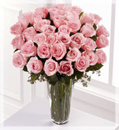 3 Dz Premium Long Stem Pink Roses Arrangement