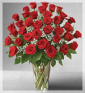 3 Dz Premium Long Stem Red Roses Arrangement