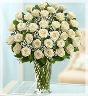 3 Dz Premium Long Stem White Roses Arrangement