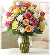 2 Dz Premium Long Stem Assorted Roses Arrangement