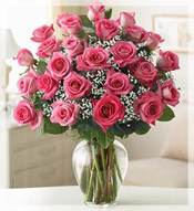 2 Dz Premium Long Stem Pink Roses Arrangement