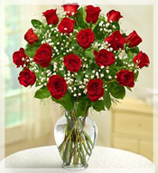 2 Dz Premium Long Stem Red Roses Arrangement