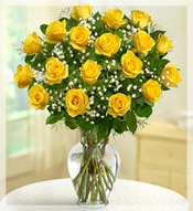 2 Dz Premium Long Stem Yellow Roses Arrangement
